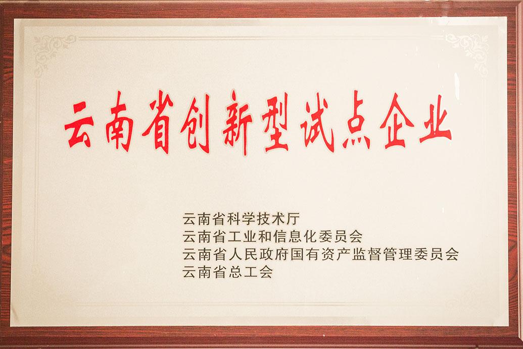 云南省创新试点企业